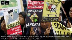march_against_monsanto_lima_peru_150523