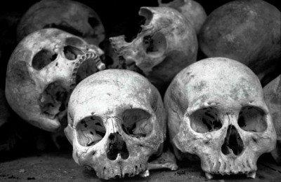 Skulls-400x260