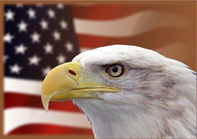 usa-eagle-400x282