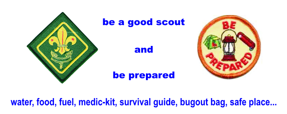 BE A GOOD SCOUT
